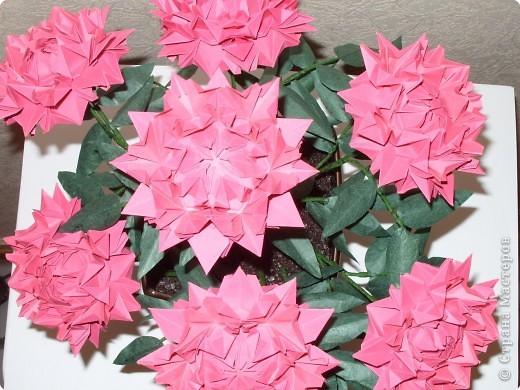 Мастер-класс Оригами: Пионы МК Бумага. Фото 2