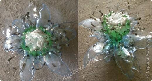 Поделка, изделие Моделирование: Новые цветы из пластиковых бутылок Бутылки. Фото 3