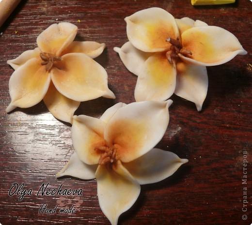 Мастер-класс Лепка: Тонировка цветов из пластики Пластика. Фото 1