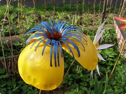 Поделка Вырезание: Садовые цветы из пластиковых бутылок Бутылки. Фото 1