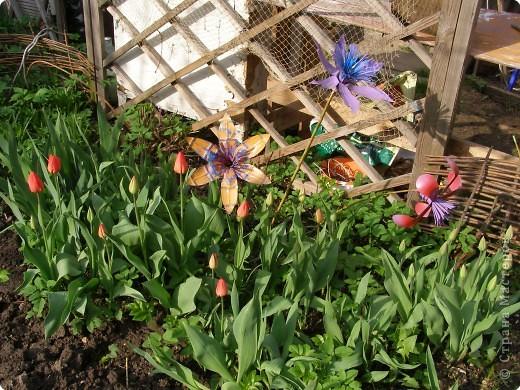 Поделка Вырезание: Садовые цветы из пластиковых бутылок Бутылки. Фото 5