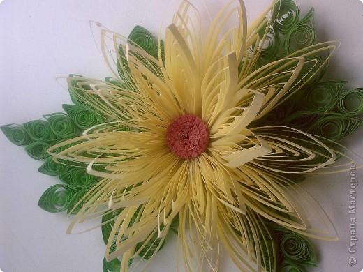 Декор предметов Квиллинг: объёмные цветы Бумага Дебют. Фото 1