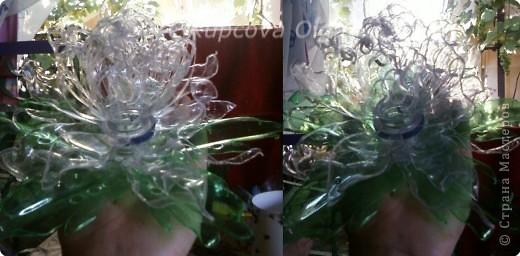 Поделка, изделие Моделирование: Новые цветы из пластиковых бутылок Бутылки. Фото 1