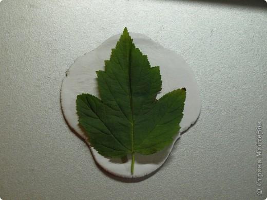 Мастер-класс Лепка: Девочки! Находка! Заинтриговала? заходите)))) Листья. Фото 2