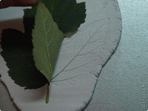 Мастер-класс Лепка: Девочки! Находка! Заинтриговала? заходите)))) Листья. Фото 5