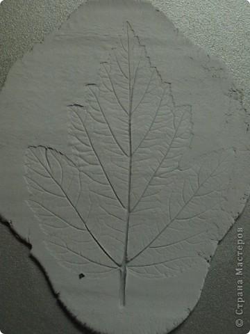 Мастер-класс Лепка: Девочки! Находка! Заинтриговала? заходите)))) Листья. Фото 7