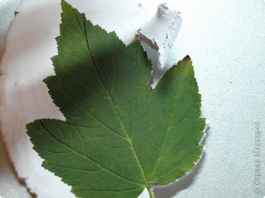 Мастер-класс Лепка: Девочки! Находка! Заинтриговала? заходите)))) Листья. Фото 8