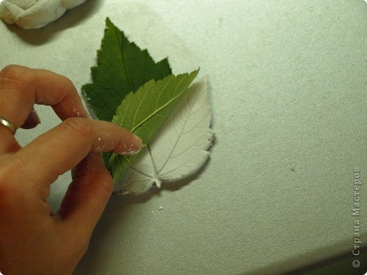 Мастер-класс Лепка: Девочки! Находка! Заинтриговала? заходите)))) Листья. Фото 9