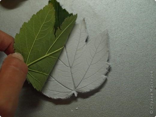 Мастер-класс Лепка: Девочки! Находка! Заинтриговала? заходите)))) Листья. Фото 10