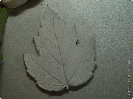 Мастер-класс Лепка: Девочки! Находка! Заинтриговала? заходите)))) Листья. Фото 11