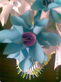 Мастер-класс,  Бумажный туннель, : Мои цветы Бумага . Фото 3