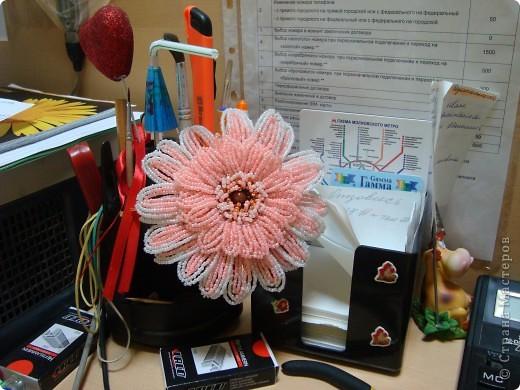 Поделка, изделие, Бисероплетение, : цветы Бисер День семьи, .  Фото 2.