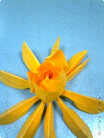 Мастер-класс,  Оригами, : Роза  Бумага 8 марта, . Фото 9