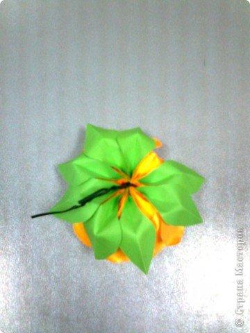 Мастер-класс,  Оригами, : Роза  Бумага 8 марта, . Фото 13