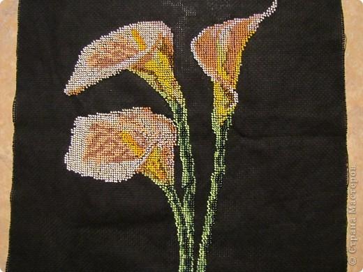 Фотография из галерей вязанные шали