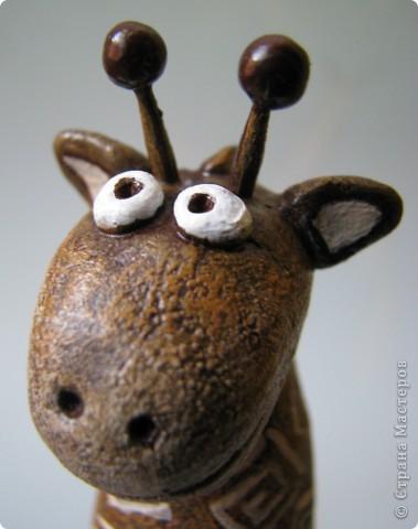 Мастер-класс, Поделка, изделие,  Лепка, Роспись, : Жирафа + подробности по раскраске Тесто соленое . Фото 1