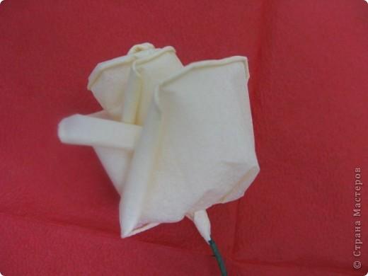 Хочу поделиться с Вами техникой изготовления роз из бумажных салфеток.Долго пыталась найти в интернете розы из салфеток. которые были бы похожи на настоящие. Мой сын очень критически оценивал все мои попытки. Только после положительной оценки самого строгого критика решила показать свою работу на всеобщее обозрение.. Фото 19