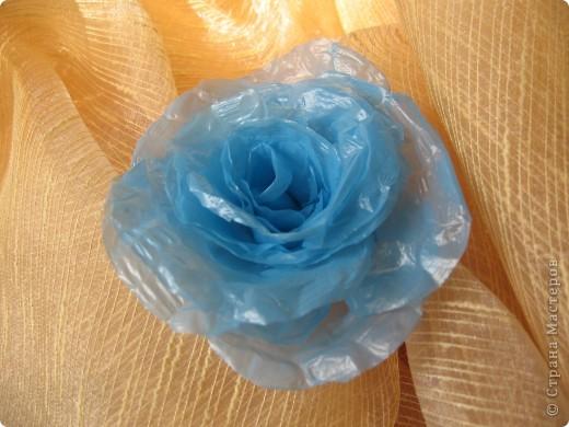 Мастер-класс,  : Роза из пластикового пакета . Фото 1