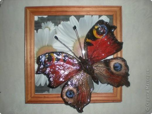 Картина, панно, Мастер-класс,  Лепка, Роспись, : Бабочка. Небольшой МК Гуашь, Проволока, Тесто соленое . Фото 7