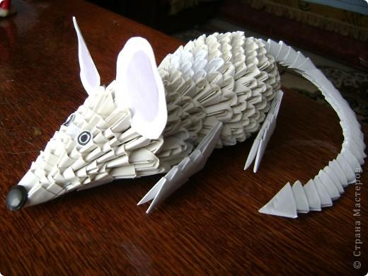 Мастер-класс,  Оригами модульное, : Крыска Лариска + МК Бумага . Фото 1