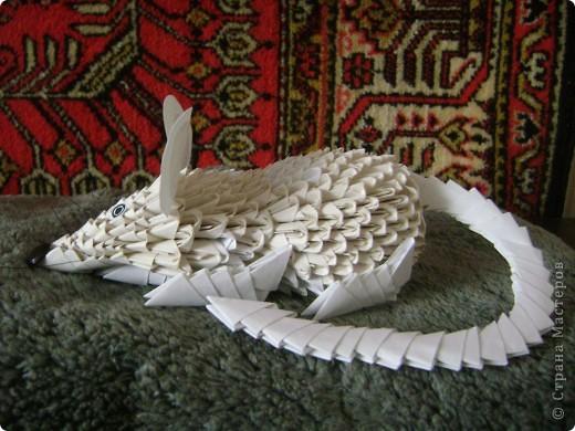 Мастер-класс,  Оригами модульное, : Крыска Лариска + МК Бумага . Фото 5
