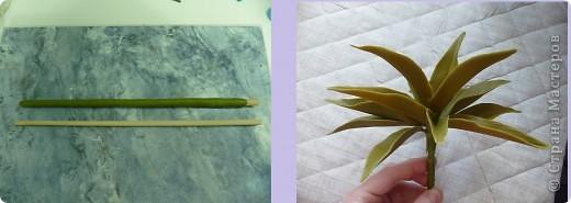 Вот рябчики я люблю, чего не могу сказать об орхидее! Поэтому лепила их с огромным удовольствием! Не совершенство конечно, зато есть к чему стремиться.. Фото 14