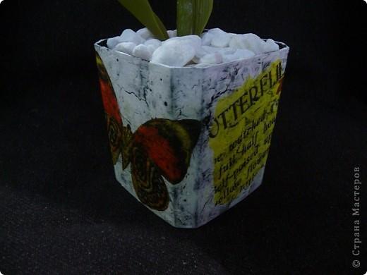 Вот рябчики я люблю, чего не могу сказать об орхидее! Поэтому лепила их с огромным удовольствием! Не совершенство конечно, зато есть к чему стремиться.. Фото 16