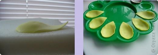 Вот рябчики я люблю, чего не могу сказать об орхидее! Поэтому лепила их с огромным удовольствием! Не совершенство конечно, зато есть к чему стремиться.. Фото 5