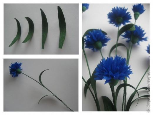 Как сделать цветок василёк 619