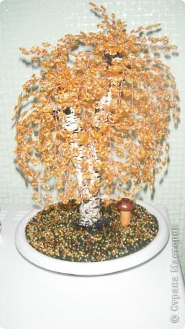 Поделка, изделие Плетение: березки из бисера.осень.