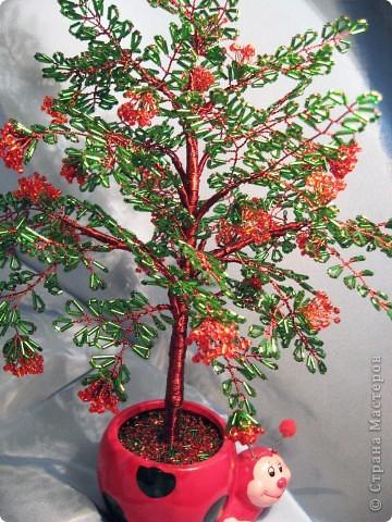 Дерево с бисера Рябина