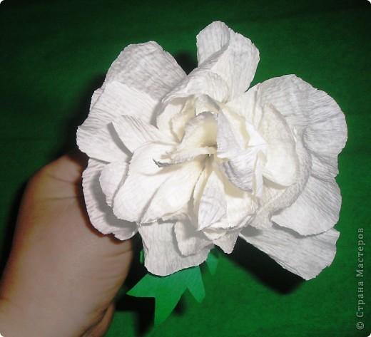 Мастер-класс, Свит-дизайн Вырезание, Моделирование: Букетик из конфет. МК для сластен с дополнениями Бумага. Фото 13
