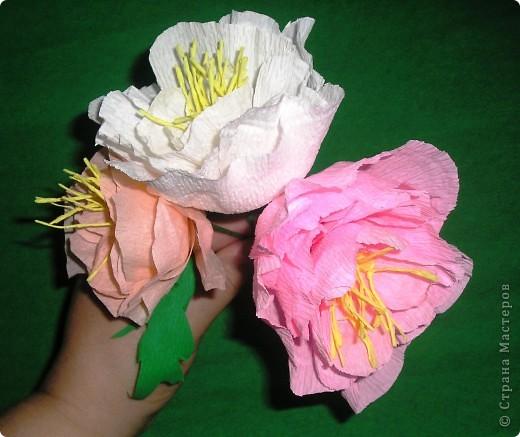 Мастер-класс, Свит-дизайн Вырезание, Моделирование: Букетик из конфет. МК для сластен с дополнениями Бумага. Фото 14