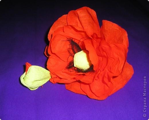 Мастер-класс, Свит-дизайн Вырезание, Моделирование: Букетик из конфет. МК для сластен с дополнениями Бумага. Фото 15