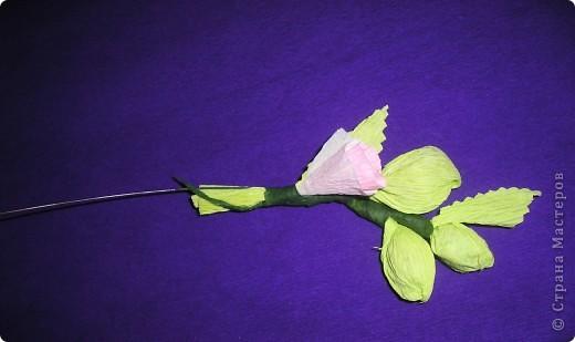 Мастер-класс, Свит-дизайн Вырезание, Моделирование: Букетик из конфет. МК для сластен с дополнениями Бумага. Фото 31