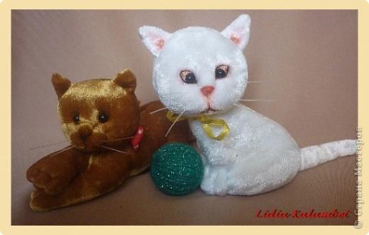 Мастер-класс Шитьё: Белый котёнок. Мастер класс. Ткань. Фото 1