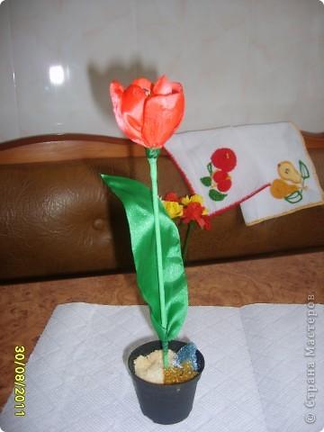 Мастер-класс Вырезание: Шёлковый тюльпан МК Ленты 8 марта. Фото 1