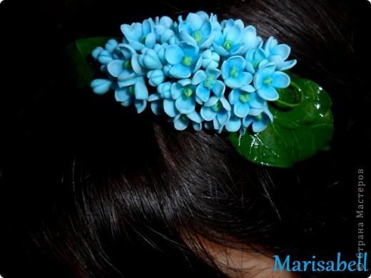 Флористика Лепка: Сирень Фарфор холодный. Фото 15