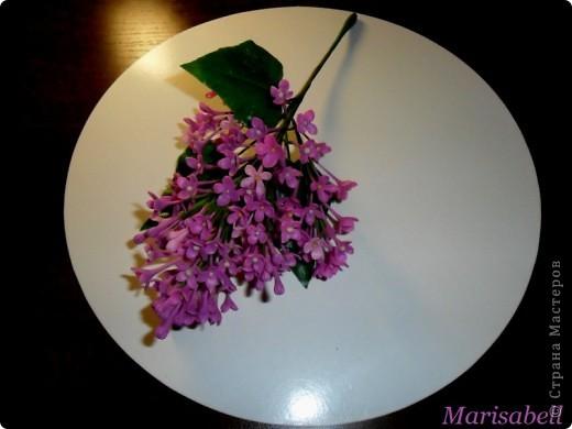 Флористика Лепка: Сирень Фарфор холодный. Фото 8