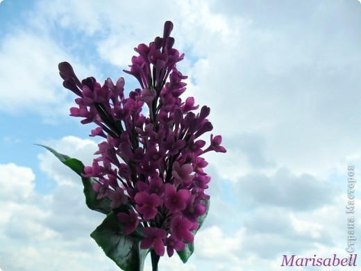 Флористика Лепка: Сирень Фарфор холодный. Фото 9