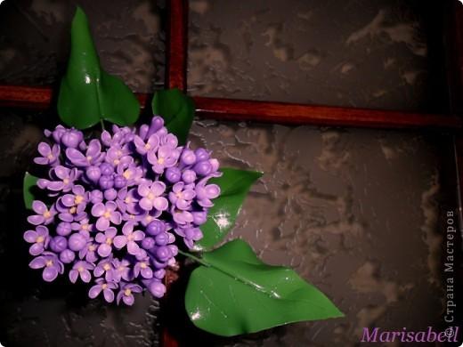 Флористика Лепка: Сирень Фарфор холодный. Фото 4