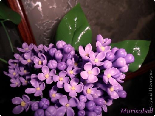 Флористика Лепка: Сирень Фарфор холодный. Фото 5