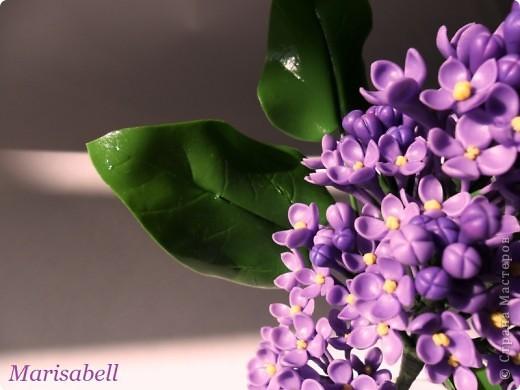 Флористика Лепка: Сирень Фарфор холодный. Фото 3