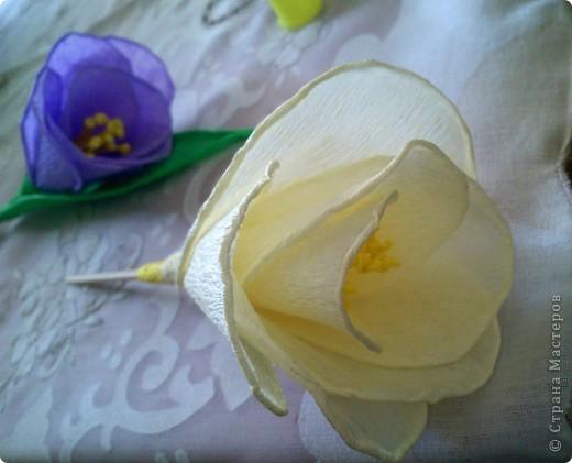 Мастер-класс Моделирование: Весенние цветочки Бумага гофрированная День матери, День рождения, День учителя, Пасха. Фото 6