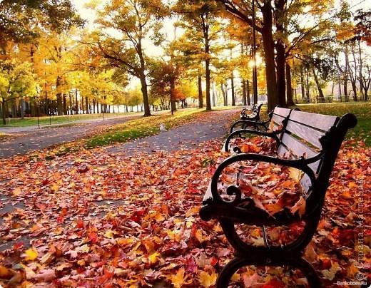 """Картина, панно, Мастер-класс Валяние (фильцевание): Картина из шерсти """"Осень в парке"""" Шерсть. Фото 3"""