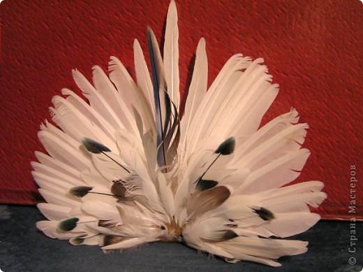 Поделки своими руками из перьев