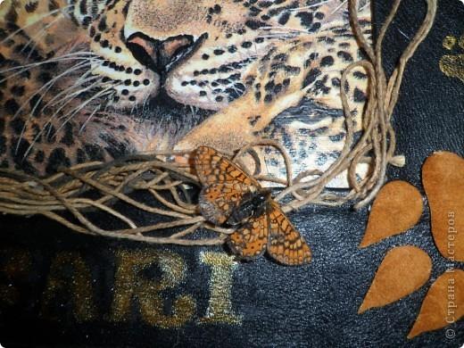 """Картина, панно, рисунок Декупаж: Картина- панно. Коллаж """"Сафари"""" Салфетки Дебют. Фото 9"""