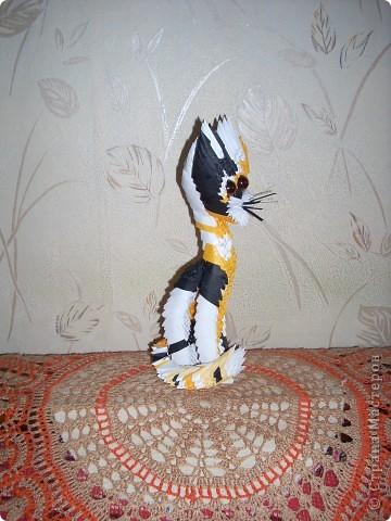 Оригами модульное: Кот