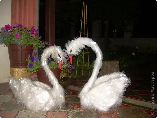 Поделка, изделие: лебеди  Полиэтилен. Фото 1