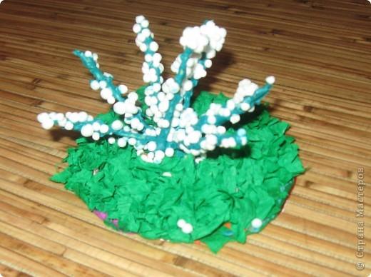 На кустике распустились белоснежные цветы.. Фото 1